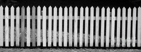 Photograph - White Picket by Patrick M Lynch