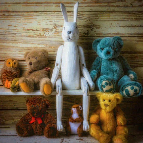 Wall Art - Photograph - White Rabbit And Bears by Garry Gay