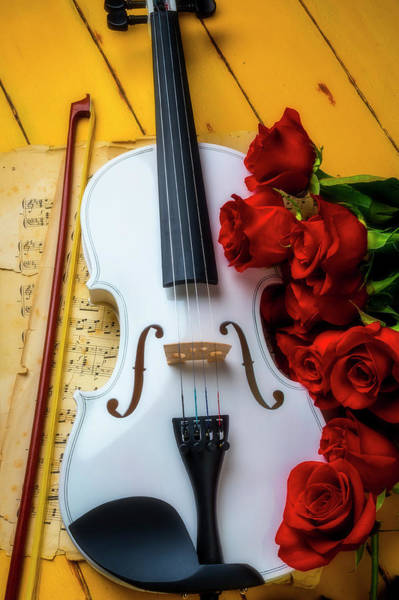 Wall Art - Photograph - White Romantic Violin by Garry Gay