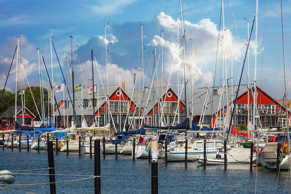 Photograph - White Sailboats At The Harbor by Debra and Dave Vanderlaan