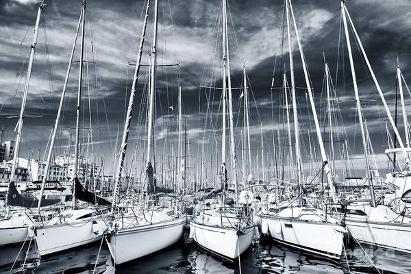 Photograph - White Sailboats In Marseille by John Rizzuto
