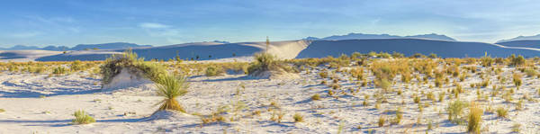 Wall Art - Photograph - White Sands Dune Panorama  by Melanie Viola