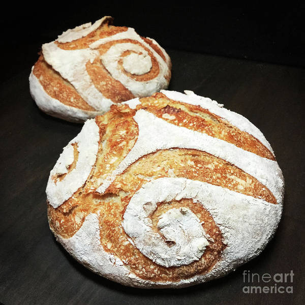 Photograph - White Spiral Scored Sourdough Duo by Amy E Fraser