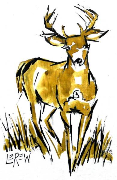 White Tailed Deer Drawing - White Tail Buck Deer by Larry Lerew