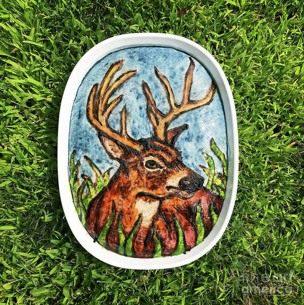 Photograph - White Tailed Buck Sourdough Painting 1 by Amy E Fraser