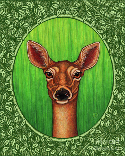 Painting - White Tailed Doe Portrait - Green Border by Amy E Fraser