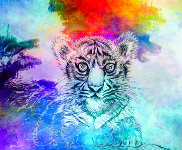 White Tiger Drawing - White Tiger Cub Colors by Abstract Angel Artist Stephen K