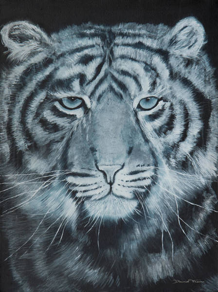 Painting - White Tiger by Dawid Theron