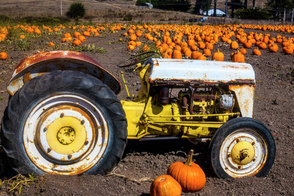 Traction Photograph - White Tractor In Pumpkin Field by Garry Gay