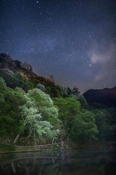 Okayama Prefecture Photograph - White Tree Under The Stars by Tdubphoto