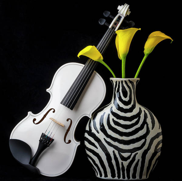 Wall Art - Photograph - White Violin And Striped Vase by Garry Gay
