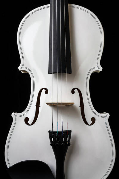 Wall Art - Photograph - White Violin by Garry Gay