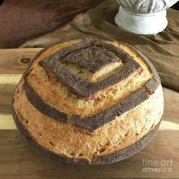 Photograph - White Whole Wheat And Rye Sourdough With Cocoa Crust 2 by Amy E Fraser