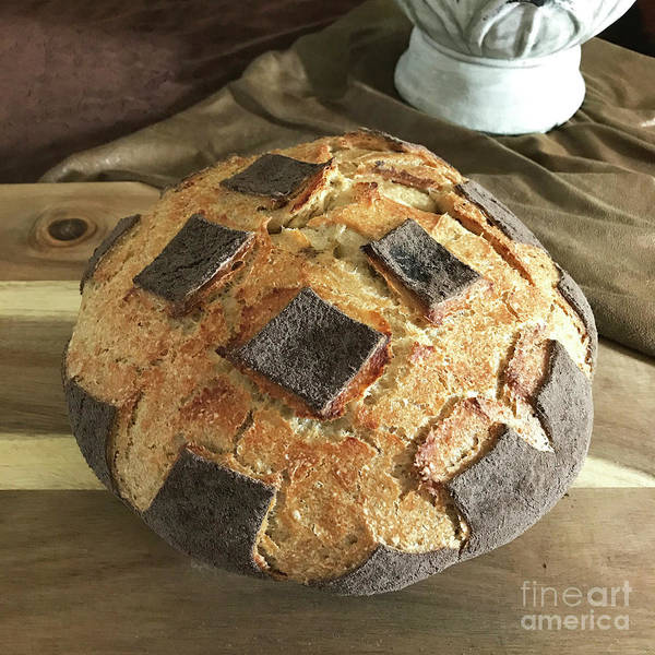 Photograph - White Whole Wheat And Rye Sourdough With Cocoa Crust 3 by Amy E Fraser
