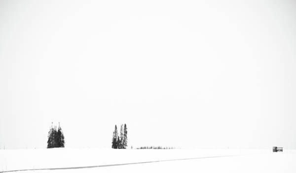 Wall Art - Photograph - White World by Hyuntae Kim