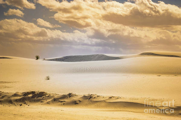 Photograph - Whites Sands National Monument by Blake Webster