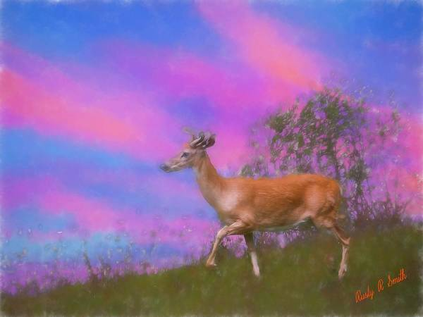 Digital Art - Whitetailed Deer. by Rusty R Smith