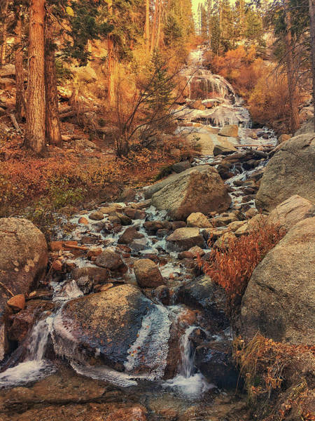 Photograph - Whitney Portal Cascades by John Hight