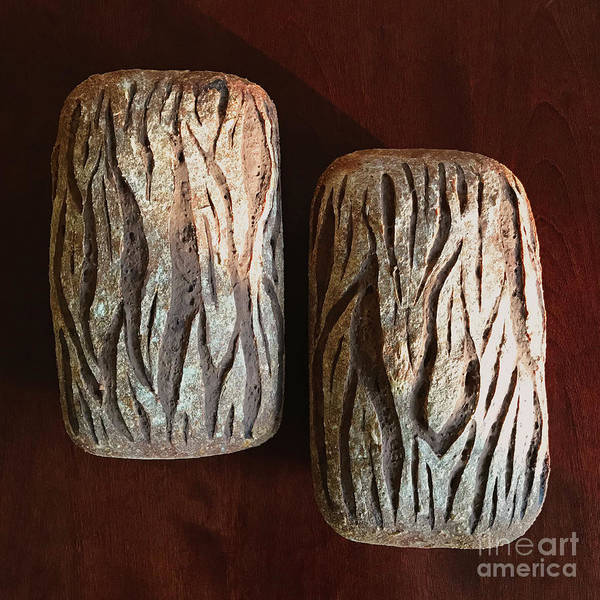 Wall Art - Photograph - Whole Grain Rye Sourdough With Caraway Seeds. Pine Bark Score 1 by Amy E Fraser