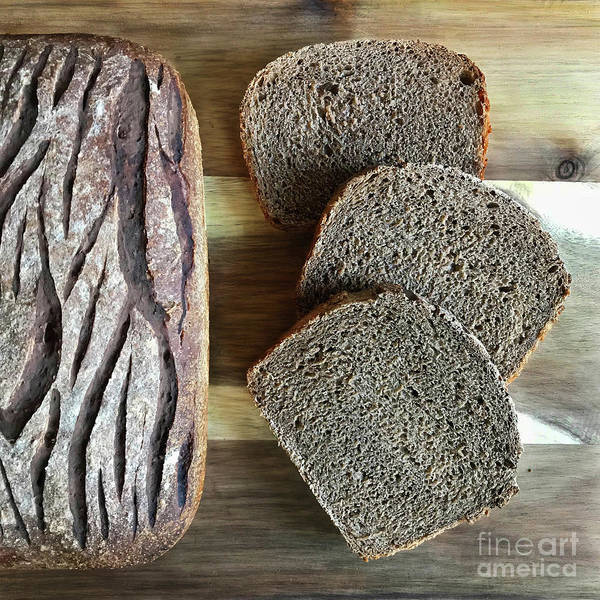 Wall Art - Photograph - Whole Grain Rye Sourdough With Caraway Seeds. Pine Bark Score 2 by Amy E Fraser