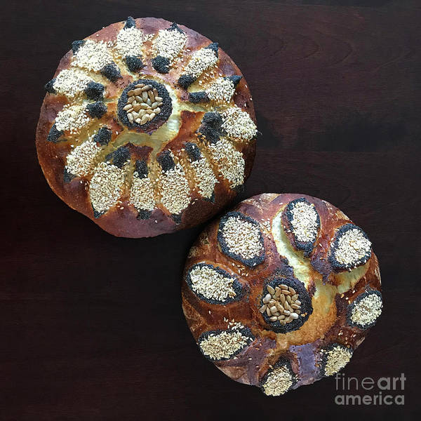 Photograph -  Whole White Wheat With Raised Seeded Floral Motif 1 by Amy E Fraser