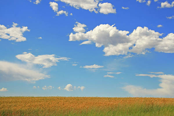 Photograph - Widescreen by By Stefano Carini