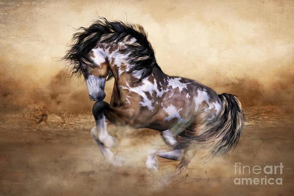 Horse Head Wall Art - Digital Art - Wild And Free Horse Art by Shanina Conway