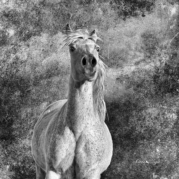 Photograph - Wild And Free by Karen Slagle
