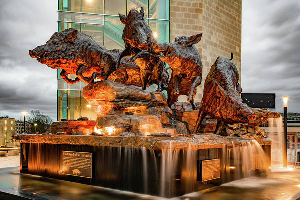 Photograph - Wild Band Of Razorbacks Monument Fountain - University Of Arkansas Razorback Stadium by Gregory Ballos