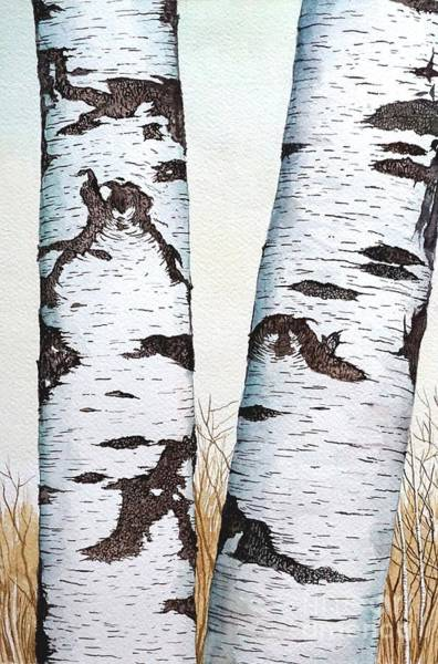 Painting - Wild Birch Trees In The Forest 1st Half In Watercolor by Christopher Shellhammer