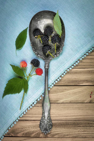 Wall Art - Photograph - Wild Blackberries by Tom Mc Nemar