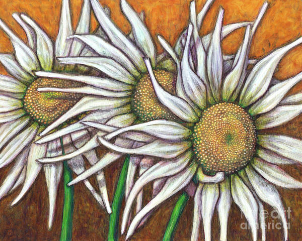 Painting - Wild Daisy Trio by Amy E Fraser