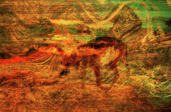 Queensland Digital Art - Wild Dingo On Fraser Island Abstract Digital Art by Roy Jacob