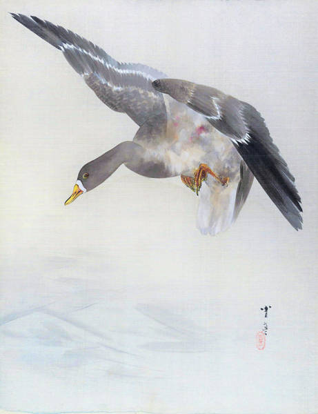 Wall Art - Painting - Wild Duck - Digital Remastered Edition by Watanabe Seitei