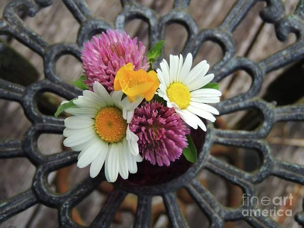 Wall Art - Photograph - Wild Flower Bouquet by Julie Rauscher
