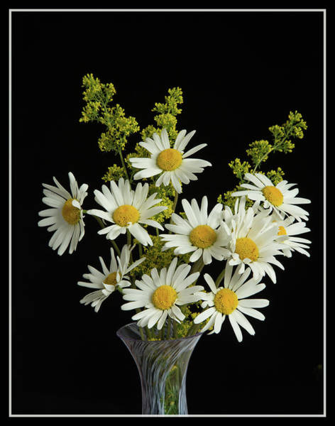 Wall Art - Photograph - Wild Flowers In A Vase by Robert Murray