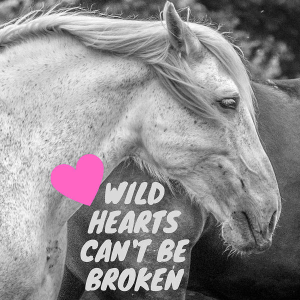 Wall Art - Photograph - Wild Hearts Can't Be Broken by Aaron Geraud
