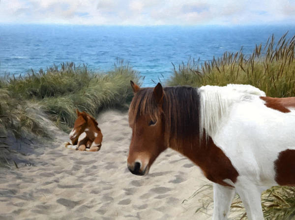 Susi Wall Art - Photograph -  Assateague Pony Susi Sole And Her Foal by Sandi OReilly