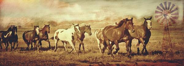 Photograph - Wild Horses And Windmills by Amanda Smith