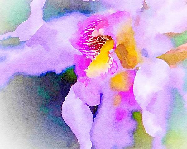 Mixed Media - Wild Orchid  by Susan Rydberg