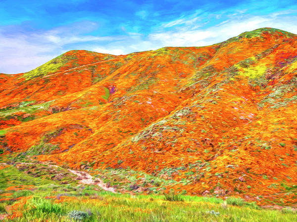 Photograph - Wild Poppies Near Lake Elsinore by Dominic Piperata