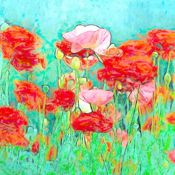 Wall Art - Mixed Media - Wild Poppy Art by Amanda Lakey