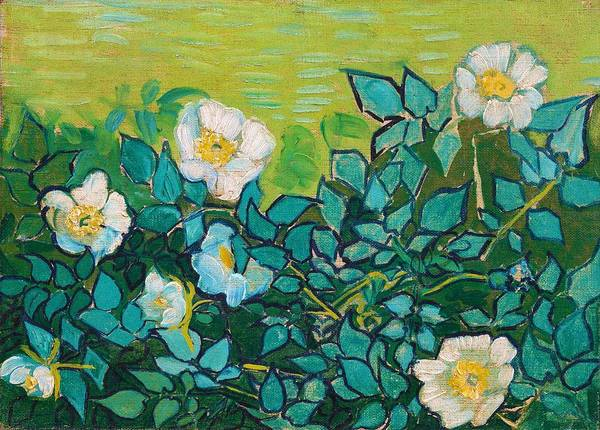 Wall Art - Painting - Wild Roses - Digital Remastered Edition by Vincent van Gogh