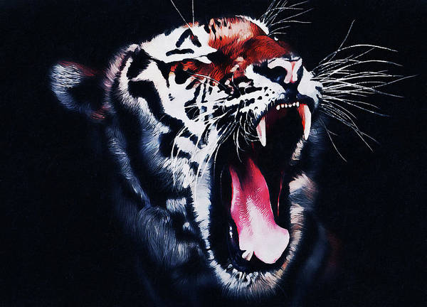 Painting - Wild Tiger - 03 by Andrea Mazzocchetti