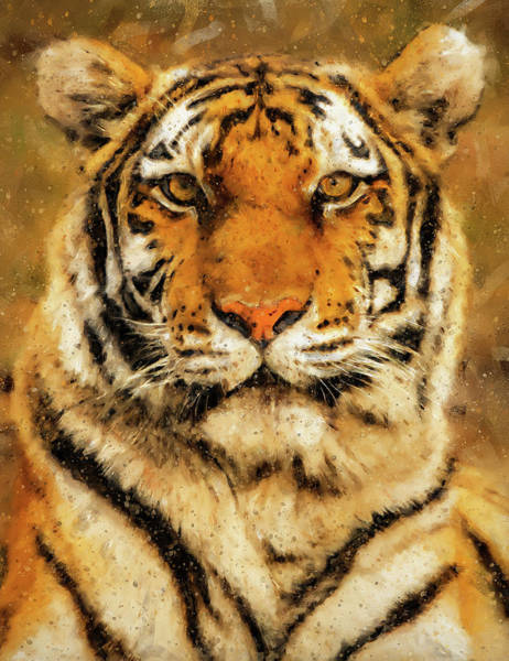 Painting - Wild Tiger - 11 by Andrea Mazzocchetti