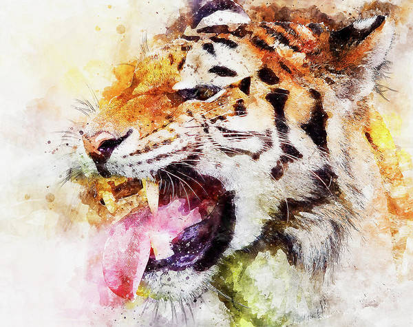 Painting - Wild Tiger - 15 by Andrea Mazzocchetti
