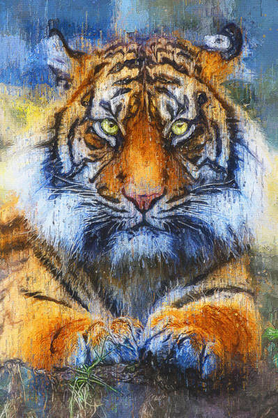 Painting - Wild Tiger - 22 by Andrea Mazzocchetti