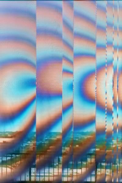 Wall Art - Photograph - Wild Window  2026 by Karen Celella