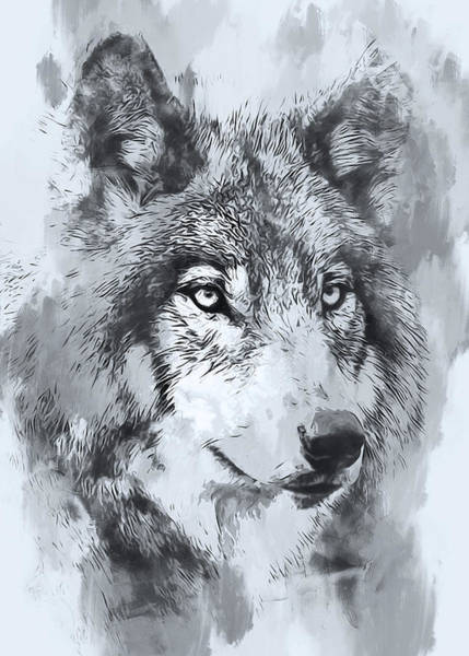 Painting - Wild Wolf - 05 by Andrea Mazzocchetti