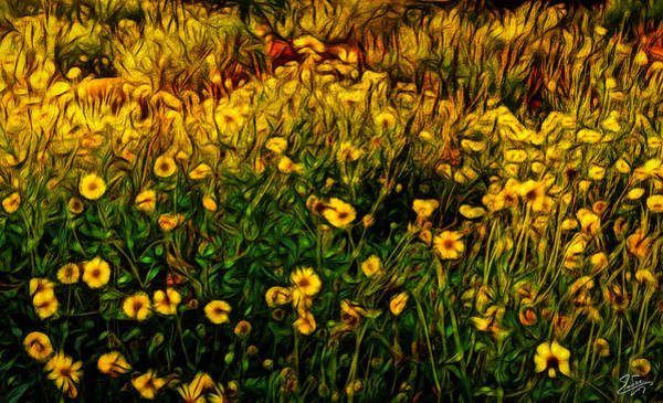 Digital Art - Wildflower Abstract by Endre Balogh